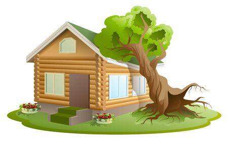 hurricane disaster: Hurricane tree fell on house. Property insurance. Illustration in vector format Illustration