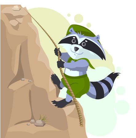 descending: Climber descending rope. Scout raccoon climbs rock. Cartoon illustration in vector format