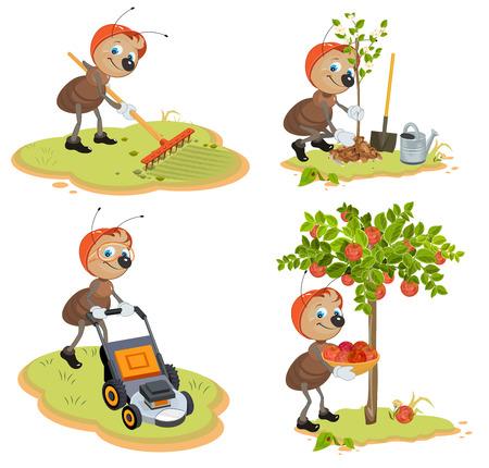 leaf cutter ant: Set Ant Gardener. Cartoon illustration in vector format