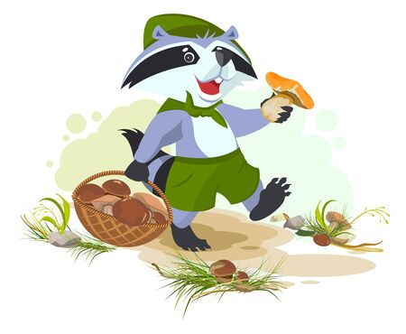 picker: Raccoon scout collects mushrooms. Mushroomer picker with basket. cartoon illustration Illustration