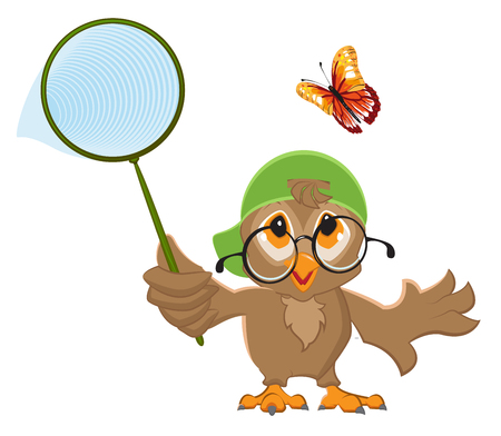 entomologist: Owl Catches butterfly. Bird and butterfly net. Isolated on white vector illustration