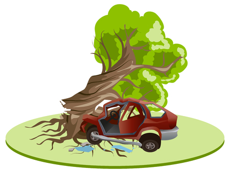 misfortune: Accident car crash ran into tree. Vehicle insurance. Illustration in vector format