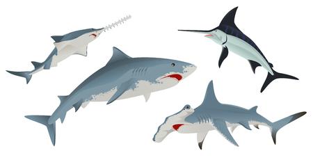 sea saw: Set Fish sea animal. Isolated on white illustration