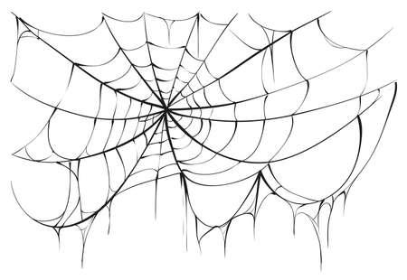 spider web: Torn spider web on white background. Illustration