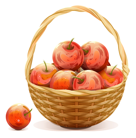 apples basket: Wicker basket full of red apples. Isolated on white vector illustration Illustration