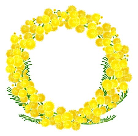 Wreath of yellow acacia flowers twigs. Isolated on white vector illustration