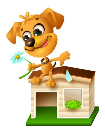 augury: Funny yellow puppy sitting on doghouse and tearing off petal of chamomile. Isolated on white vector cartoon illustration