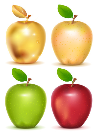 golden apple: Set of red, yellow, green and gold apple on white background. Isolated vector illustration