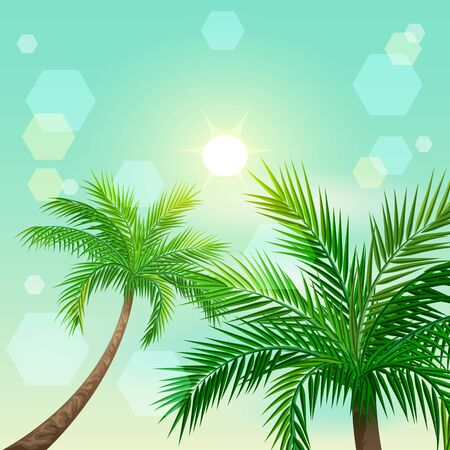 Tropical palm trees and sun in zenith. Paradise landscape vector illustration