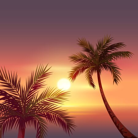 beach sunset: Sunset on tropical island. Black silhouette of palm tree in red sky. Vector cartoon illustration