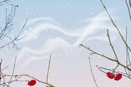 Red berries and branches of mountain ash on background of winter sky. Snowfall winter sky landscape. Vector nature illustration
