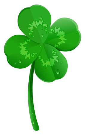 Green lucky four leaf clover symbol of St. Patricks day. Isolated on white vector cartoon illustration.