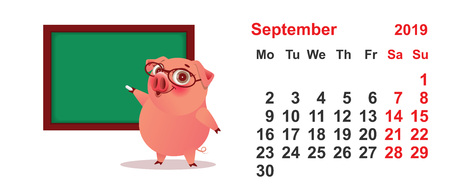 Calendar September 2019 year pig teacher at green blackboard. Isolated on white vector cartoon illustration