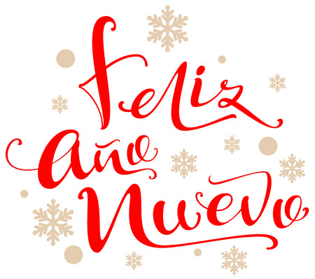 Feliz ano nuevo text translation from Spanish. Isolated on white vector lettering illustration greeting card