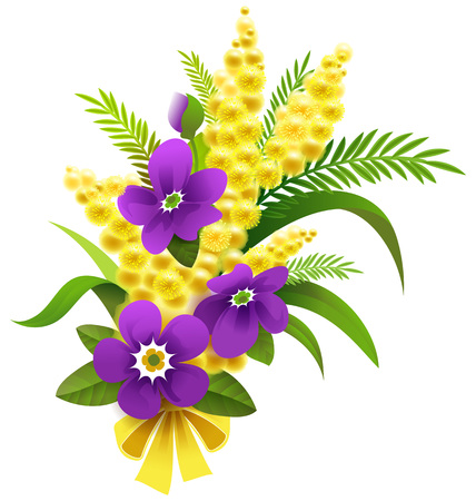 Yellow mimosa and violet flower bouquet on March 8. Vector isolated on white