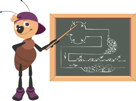 Ant teacher at blackboard shows drawing. Animal education vector cartoon illustration isolated on white Illustration
