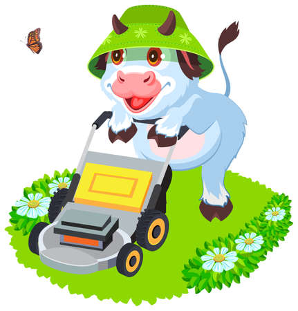 Cow bull mowing grass lawn. Funny animal symbol 2021. Isolated on white vector cartoon illustration