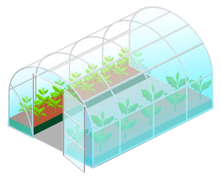 Open greenhouse glass with green plants isometric icon isolated on white background. Vector cartoon illustration Stock Illustratie