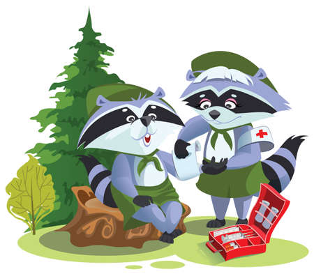 Scout raccoon bandaging first aid on hike. Boy Scout Medic. Vector cartoon illustration