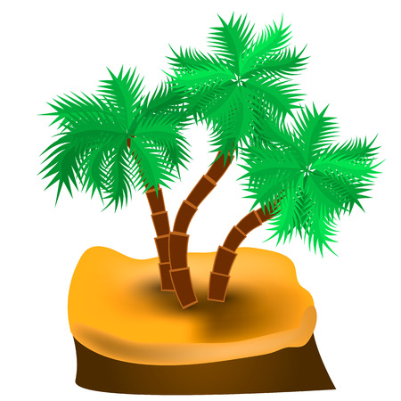 Island with palm trees on a white background. Vector illustration.