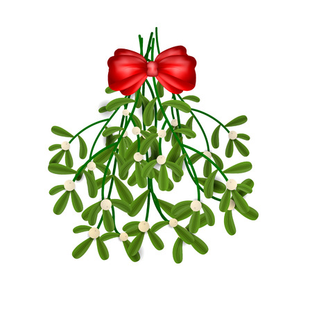 mistletoe isolated on a white background. Vector