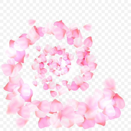 Pink cherry blossom  with falling leaves. Isolated on white background. Spring composition with sakura. Vector illustration Ilustração