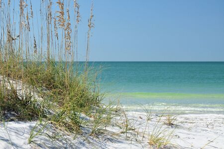 gulf: Paradise a Desolate beach in Florida on the Gulf Of Mexico Stock Photo