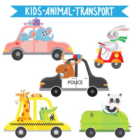 Funny animals on transport. Elephant, rabbit, elk, panda, crocodile, giraffe. Vector illustration on white background. Kids cartoon. Illustration