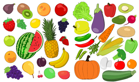 Set of fruits and vegetables - Vector Illustration