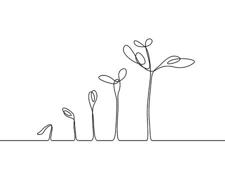 Dibujo continuo de una línea Proceso de crecimiento de la planta. Ilustración vectorial
