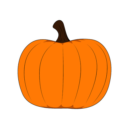 Pumpkin vector isolated on white background