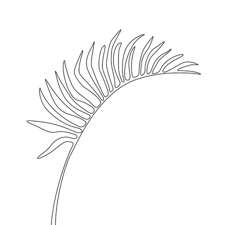 One line drawing areca leaf. Continuous line exotic tropical plant.