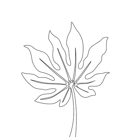 One line drawing fatsia japonica. Continuous line exotic tropical plant.