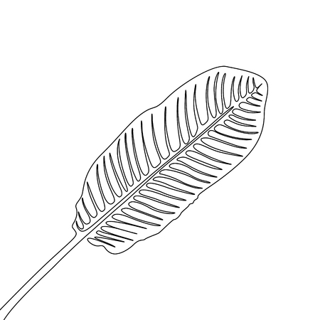 One line drawing banan leaf. Continuous line exotic tropical plant.