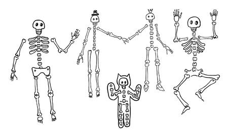 Skeletons Stock Vector - 20209197