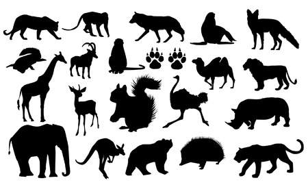 hedgehog: Wild Animals Silhouettes