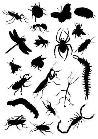 Set of insect silhouettes Stock Illustratie