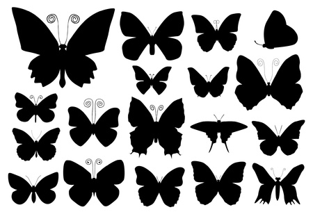 black butterfly: Butterfly silhouettes Illustration