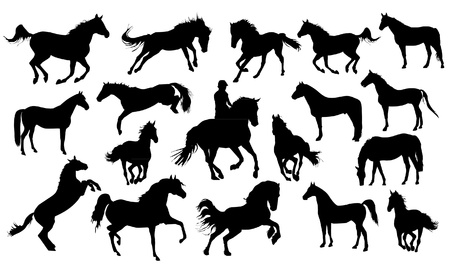 horse riding: Set of vector horses silhouettes