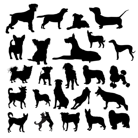 boxer dog: Conjunto de silueta de perros