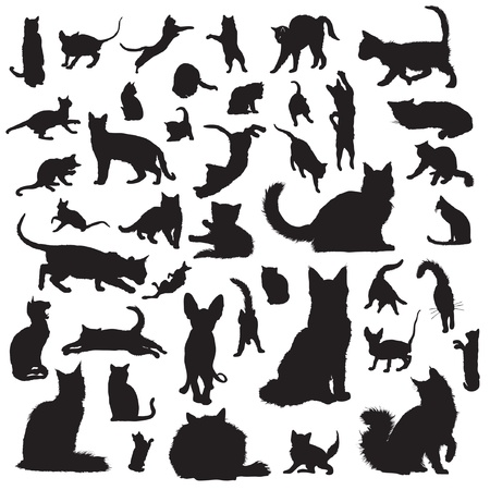 Collection of cat silhouettes Vector