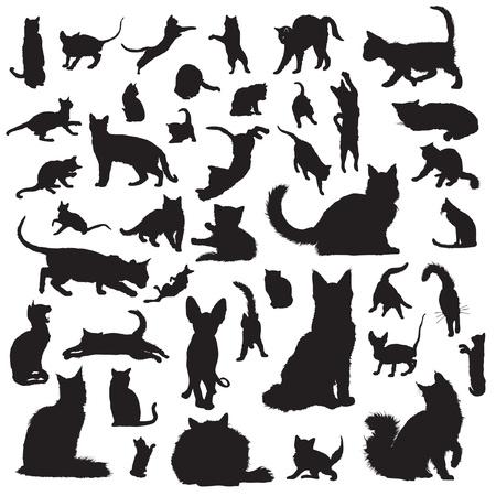 Sammlung von Silhouetten Katze Standard-Bild - 22260252