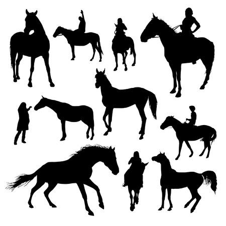 silueta ciclista: Conjunto de vectores de siluetas de caballos Vectores