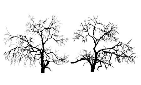 dode bladeren: Twee dode bomen zonder bladeren Stock Illustratie