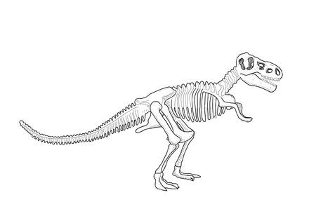 t rex: Dinosaur skeleton Illustration