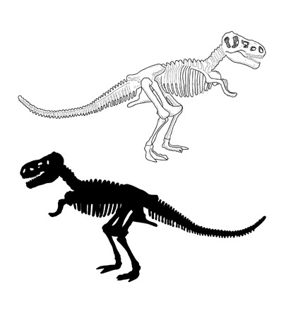 Dinosaur Skeleton Vector