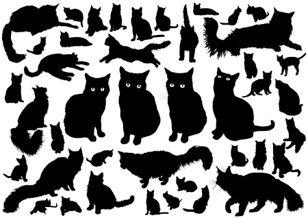 black cat silhouette: Cat silhouettes Illustration