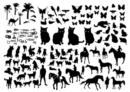 cat silhouette: Animals Silhouette Illustration