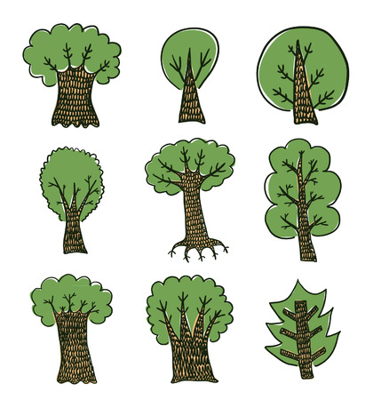 mangrove forest: Hand drawn trees