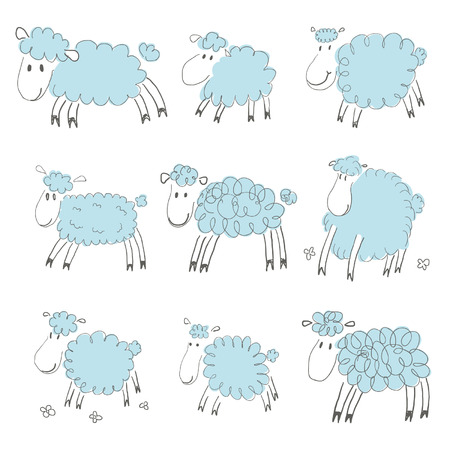 pencil drawings: Sheep sketches Illustration